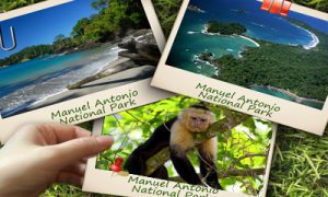 Costa-Rica-Manuel-Antonio-National-Park-Tour