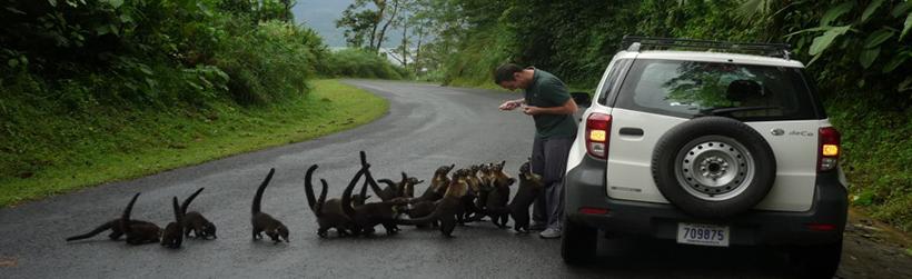 costa-rica-self-drive