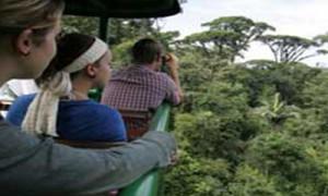 tropical_escape_aerialtram
