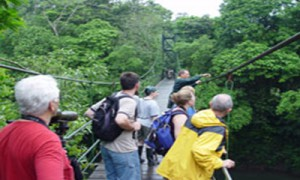 tropical_expedition_monteverde_walks