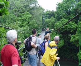 tropical_expedition_monteverde_walks