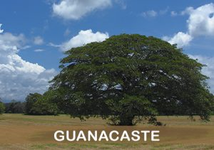 guanacaste-costa-rica