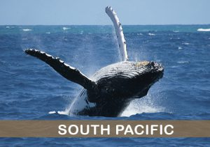 south-pacific-costa-rica-hotels