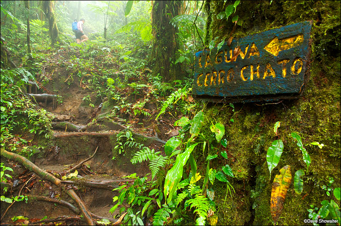 Cerro Chato Hiking Trail