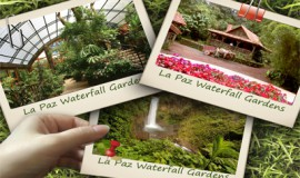 La Paz Waterfall Gardens One Day Tour