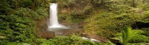 La Paz Waterfall Gardens Tour