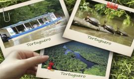 Tortuguero One Day Tour