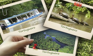 Tortuguero One Day Tour