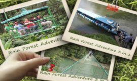 Costa-Rica-Rain-Forest-Adventure